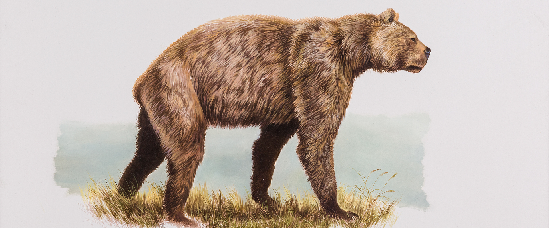 The Top 15 Most Beautiful Extinct Animals