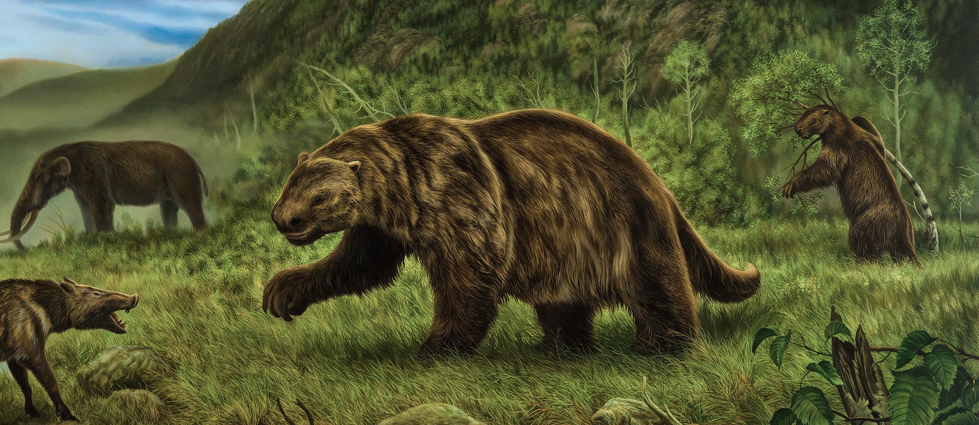 Вымершие животные, готовые к перерождению: Топ-10