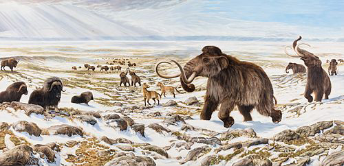 Beringia Winter Scene by George Teichmann.