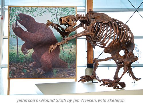 Jefferson's Ground Sloth by Jan Vriesen, with skeleton